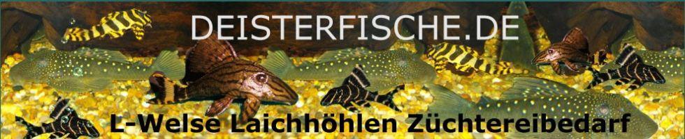 Deisterfische-Logo